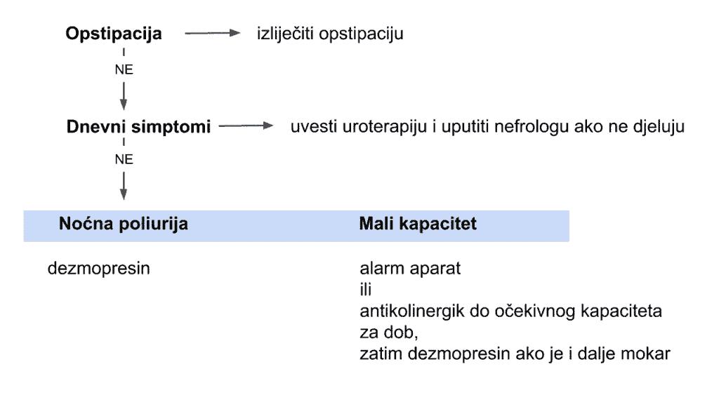 algoritam liječenja noćnog mokrenja